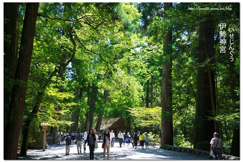 【三重伊勢-景點】日本人一生一定要去參拜一次的神聖之地.伊勢神宮(內宮) @Irene's 食旅.時旅