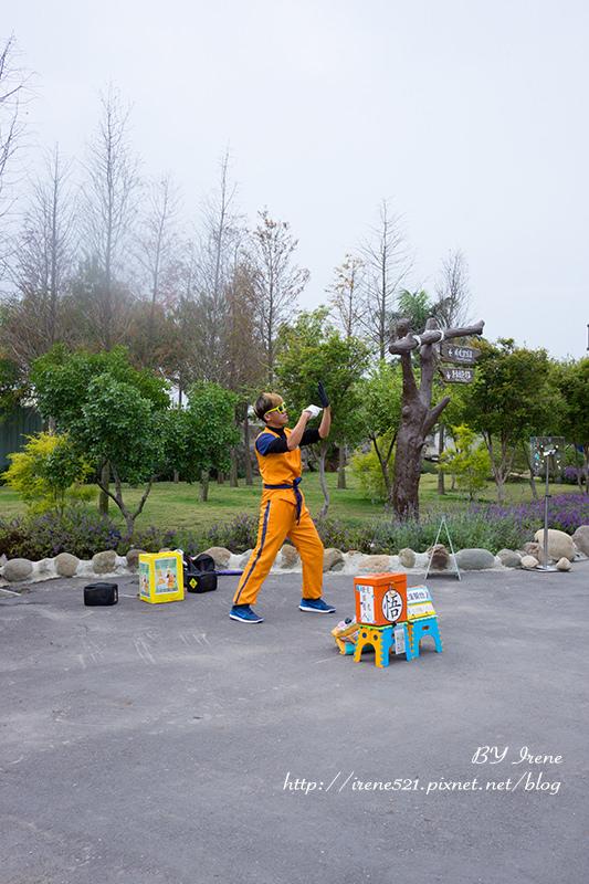 【嘉義景點】走入小熊童話森林.熊大庄森林主題休閒園區