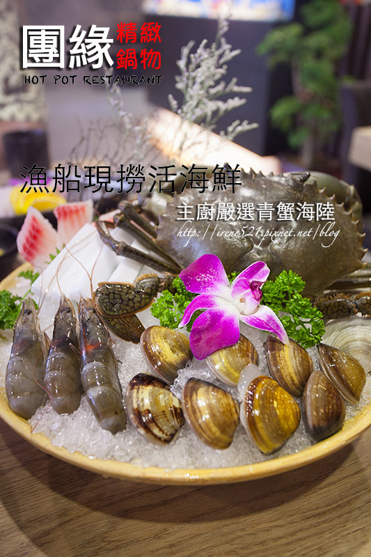 【台北內湖區】活海鮮供應,新鮮的好品質.團緣精緻鍋物 @Irene's 食旅.時旅