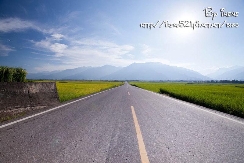延伸閱讀:【台東池上】是畫布還是真實的天堂之路.伯朗大道