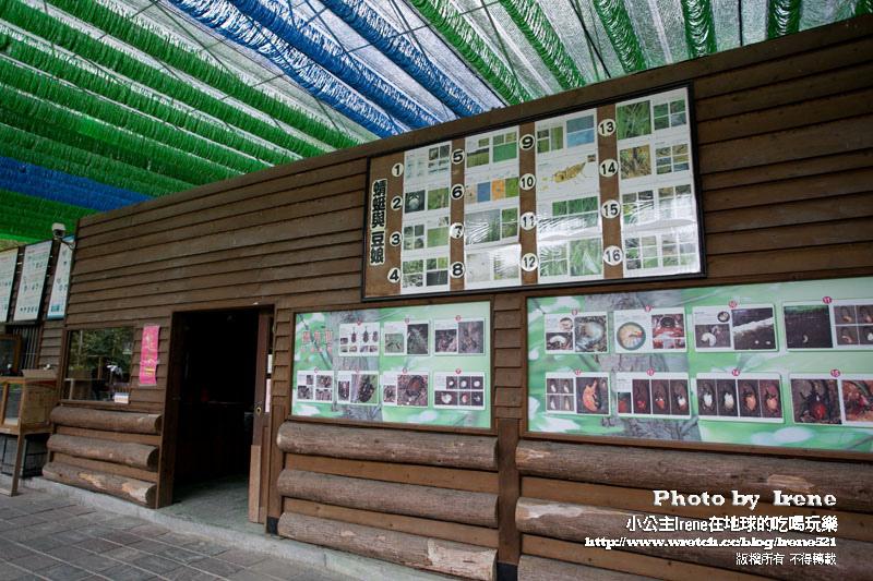 中埔綠盈牧場