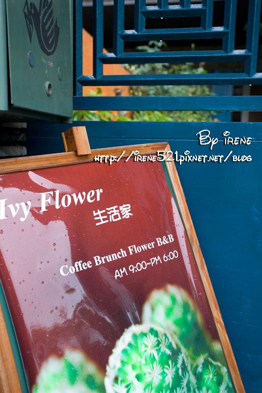 Ivy Flower生活家.以足居所-B&B