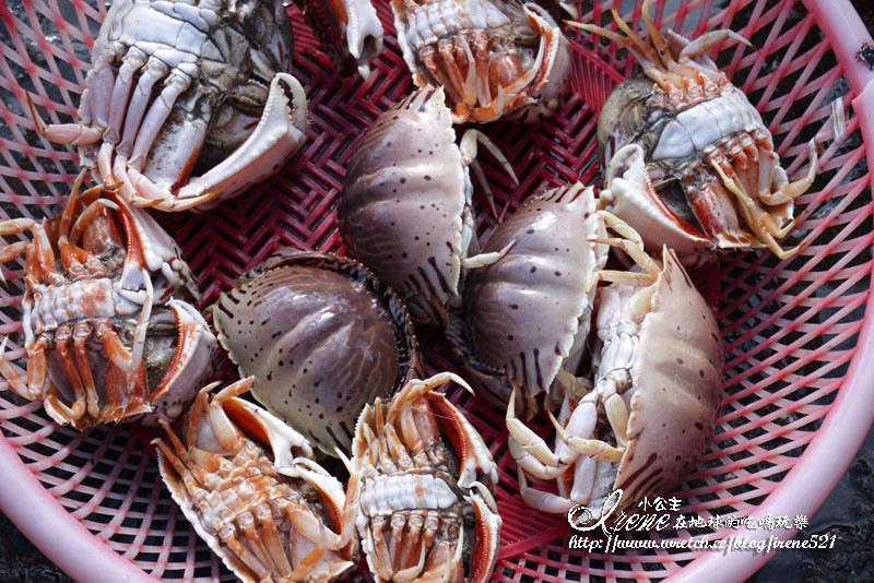 即時熱門文章:【宜蘭】採買漁貨的好地方.大溪漁港