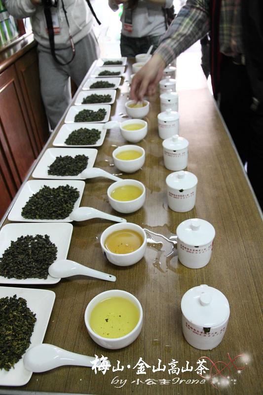 即時熱門文章:【嘉義梅山】茶香滿屋.金山高山茶