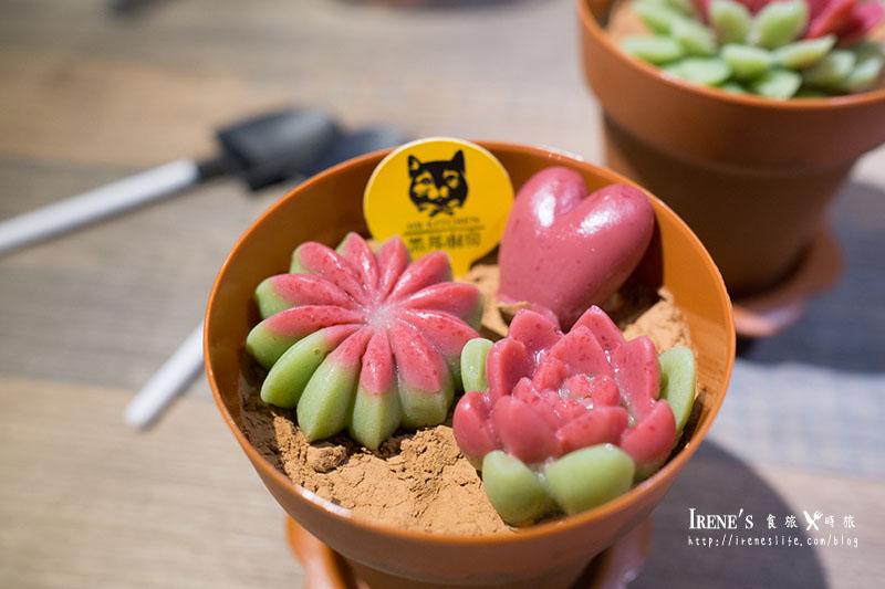 多肉植物盆栽甜點