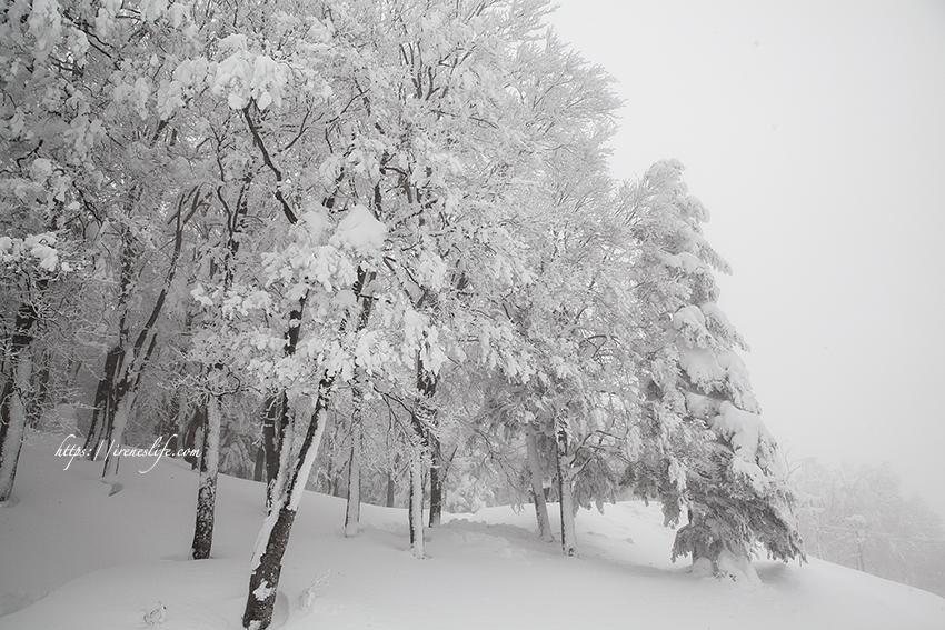 延伸閱讀:【山形景點】一生一定要看一次,壯觀而震撼的樹冰群,含 藏王樹冰 交通攻略、注意事項
