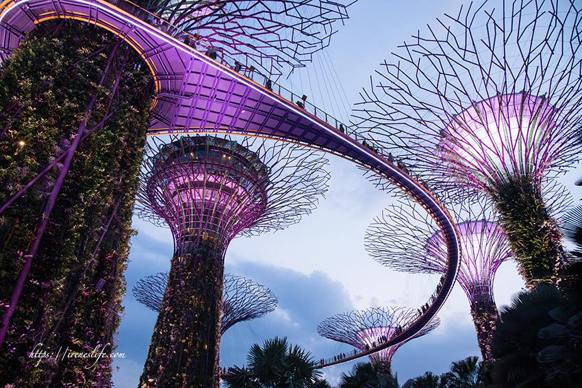 即時熱門文章:【新加坡景點】新加坡必去必看,濱海灣花園天空樹燈光秀、穿梭於天空樹間的空中步道 (內有影片)