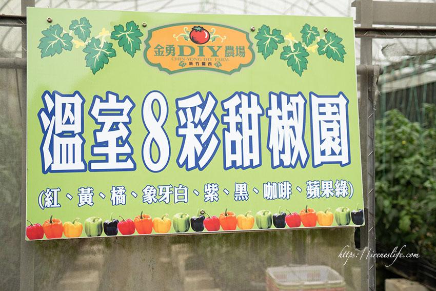 【新竹】免門票,DIY採果樂,採番茄、草莓、甜椒超好玩,還可以自己搗麻糬.金勇DIY休閒農場