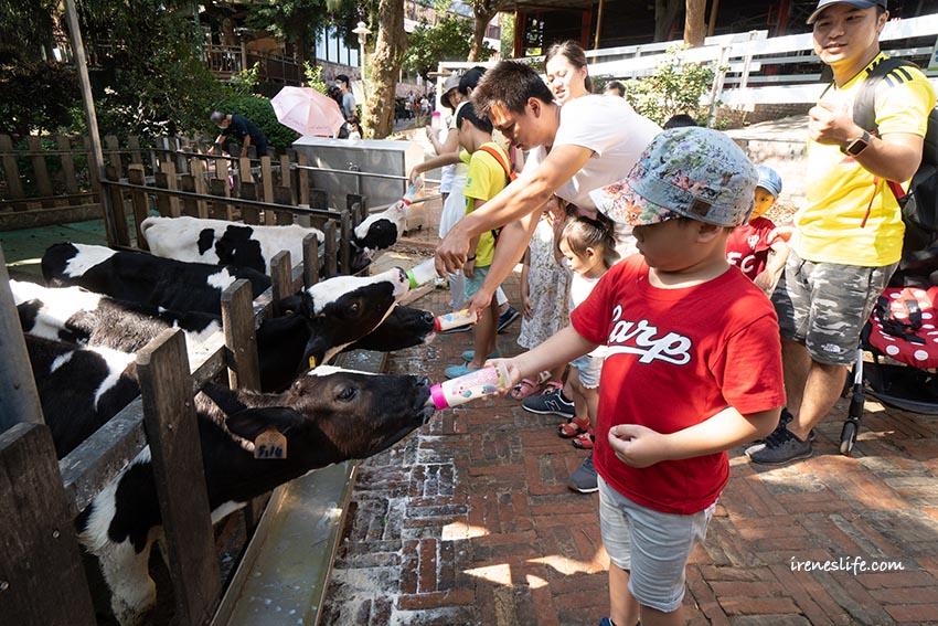 即時熱門文章:【苗栗】苗栗親子景點,極速滑草、餵小牛喝奶、披薩DIY、奶酪DIY.四方鮮乳牧場