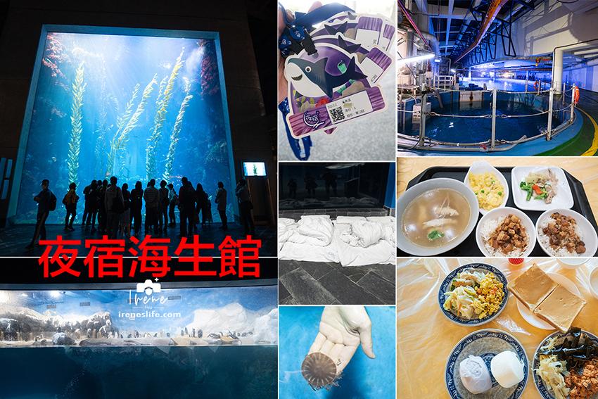 網站近期文章:【屏東】與海底生物一起入睡!一泊三食還有滿滿的活動,夜宿海生館費用、注意事項、活動內容、餐點