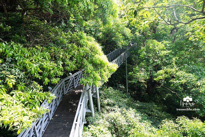 今日熱門文章:【五股】觀音山林梢步道,幼幼班入門等級的親子步道,綠意盎然的空中步道,一起走入戶外吧